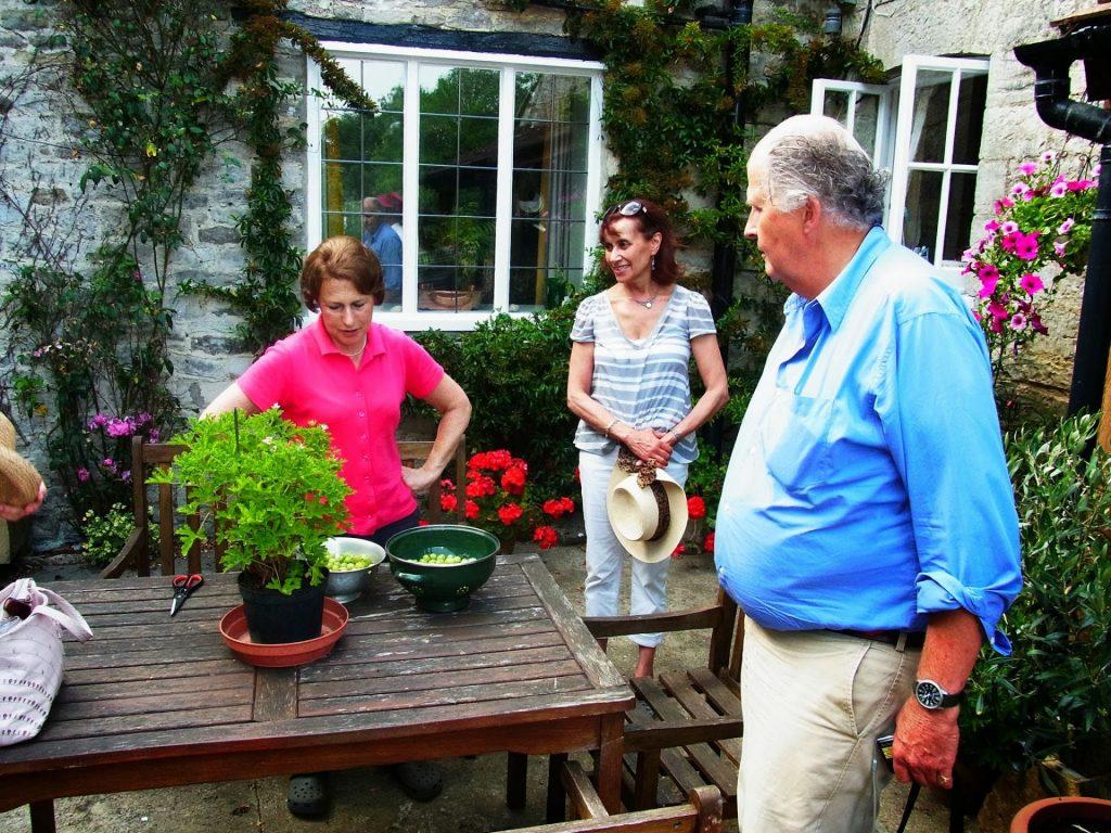 Susan Kerton, Ruth Sawtell and Nicholas Collis admiring the bowls of gooseberries at Higher Farm, Chilton Cantelo